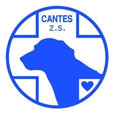 cantes_modra_zs.jpg